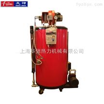 燃汽蒸汽发生器