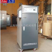 WDR0.06-0.7小型立式电蒸汽发生器
