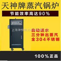 WDR0.034-0.7小型电蒸汽锅炉