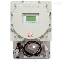 FT-100Ex-O2型防爆式氧量分析仪