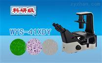 科研级三目倒置荧光显微镜WYS-41XDY