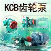 乳液输送泵涂料油脂化工泵齿轮油泵