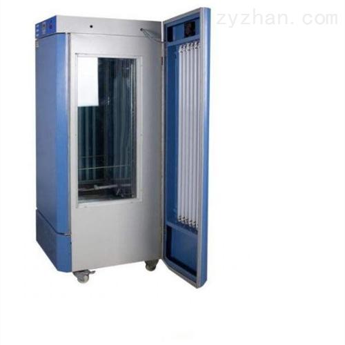 BSG-300光照培养箱