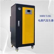 36KW上海蒸汽锅炉