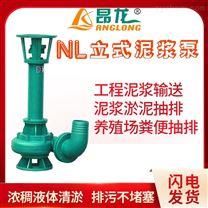 单级单吸泥浆泵 NL型杂质污水污泥泵