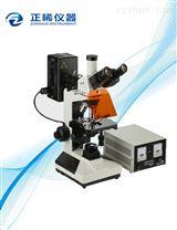 透反射荧光显微镜ZFM-220