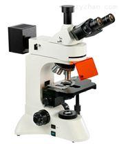 WSF400荧光显微镜