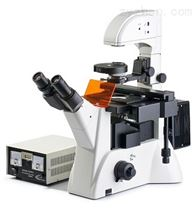 WSFI1000倒置荧光显微镜