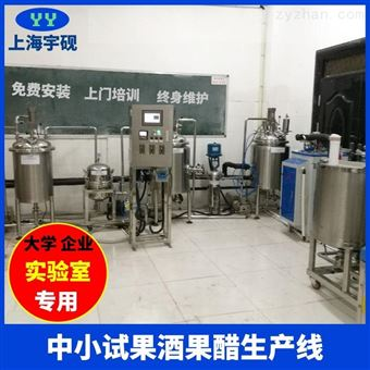 Y-GZ-X實驗型果汁飲料生產線