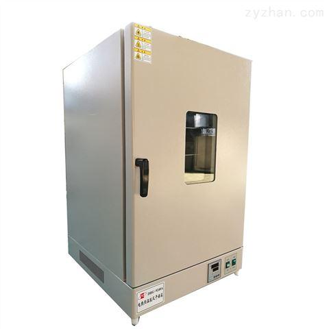 电热恒温鼓风干燥箱 DHG-9240A