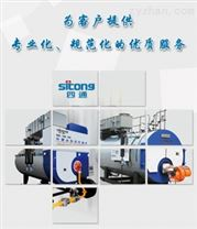 WNS系列双燃料蒸汽锅炉